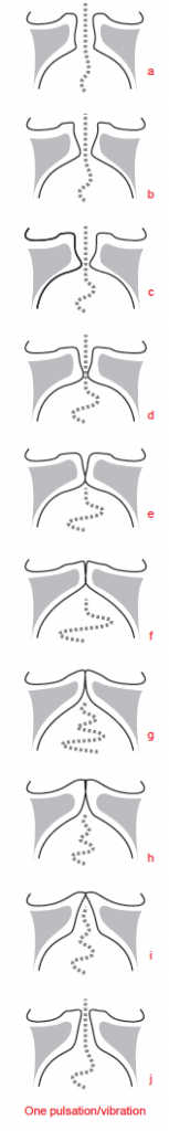 Vibratory cycle