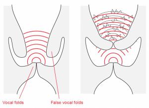 Description and sound of Distortion – CVT Research Site